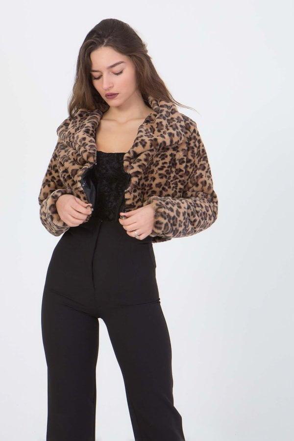 Jacket animal print Coocu